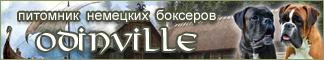 banner_big[1]