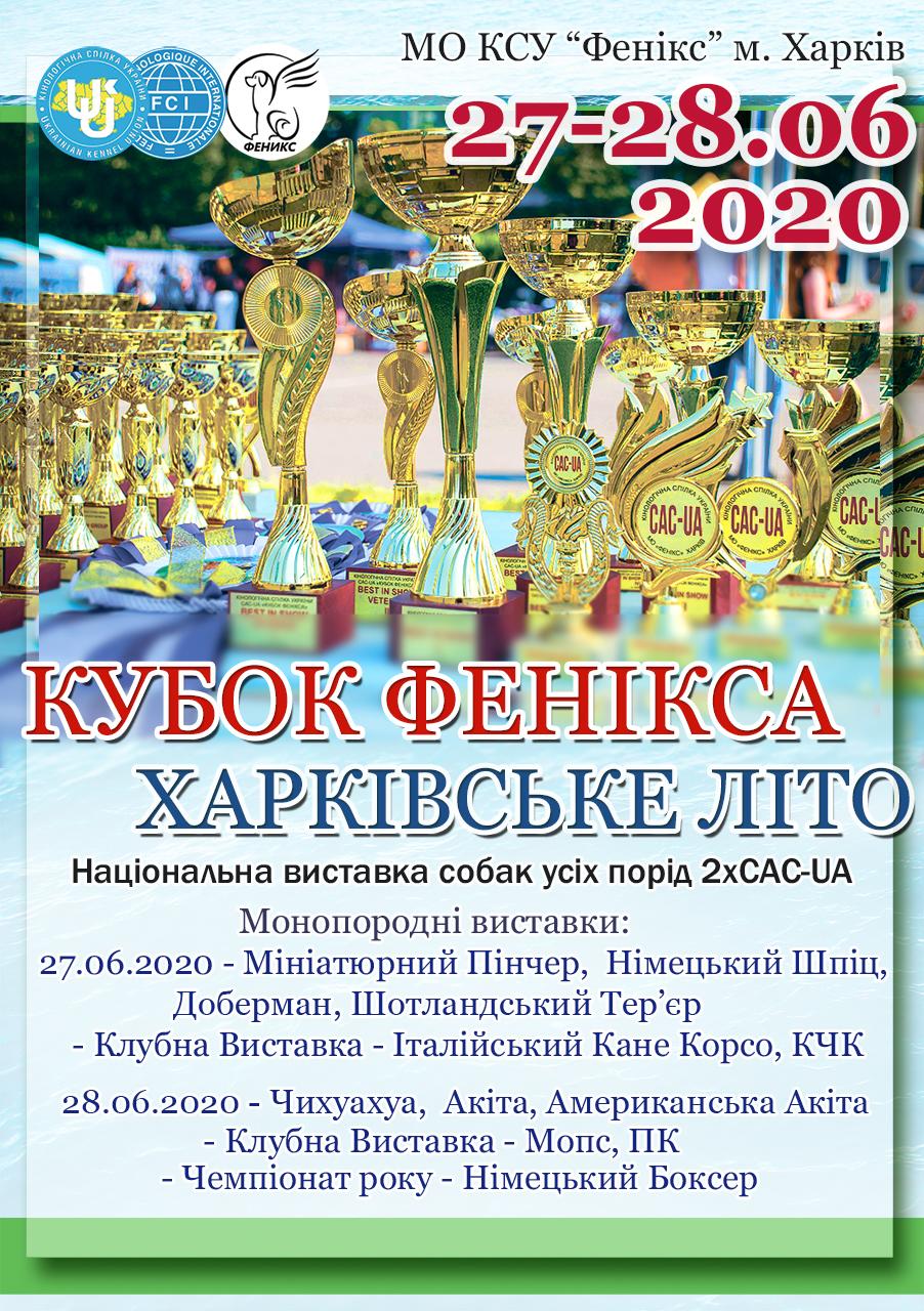афиша 2020